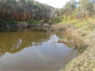 Так как основное использование озера – это рыбная ловля, мы обследовали его