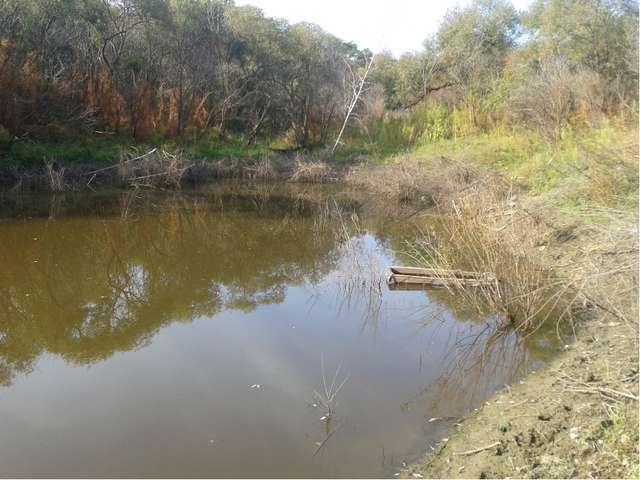 Так как основное использование озера – это рыбная ловля, мы обследовали его...