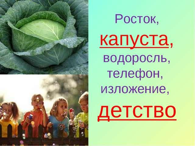 Росток, капуста, водоросль, телефон, изложение, детство