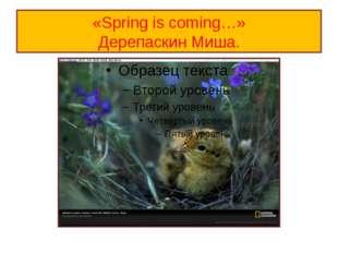 «Spring is coming…» Дерепаскин Миша.