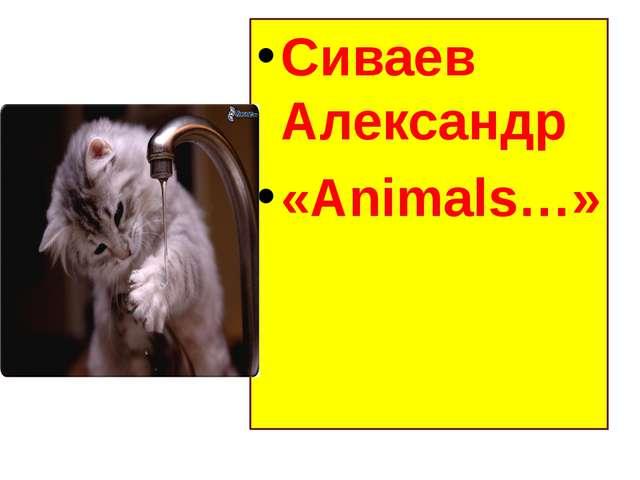 Сиваев Александр «Animals…»