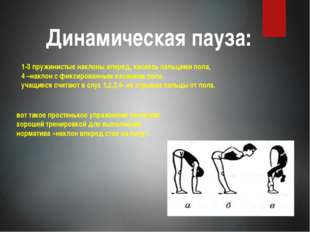 Динамическая пауза: 1-3 пружинистые наклоны вперед, касаясь пальцами пола, 4