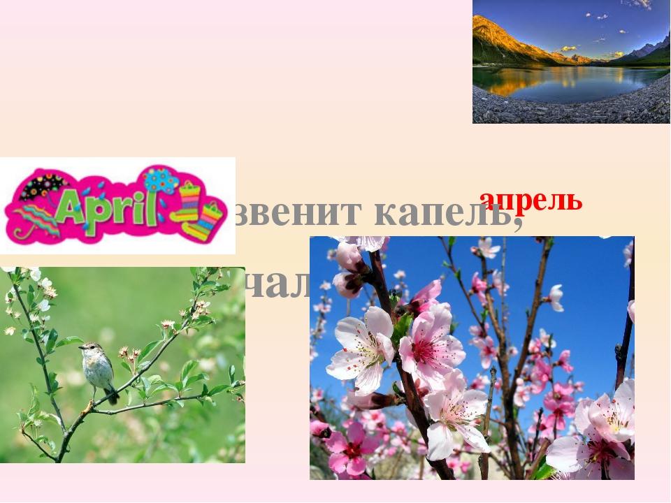 апрель Больше не звенит капель, начался, ……. .