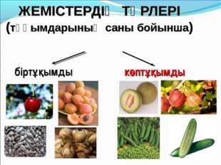ЖЕМІСТЕРДІҢ ТҮРЛЕРІ (тұқымдарының саны бойынша) біртұқымды көптұқымды