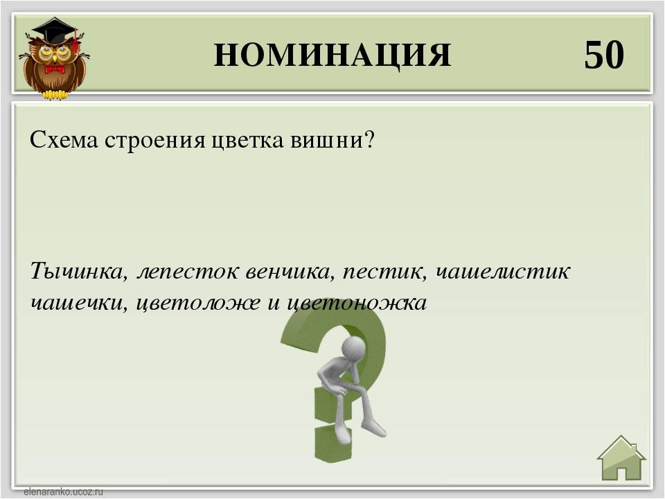 НОМИНАЦИЯ 50 Тычинка, лепесток венчика, пестик, чашелистик чашечки, цветоложе...