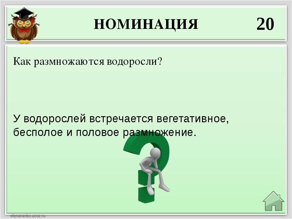 НОМИНАЦИЯ 20 У водорослей встречается вегетативное, бесполое и половое размно...