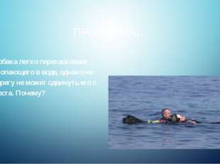 ПРОБЛЕМА… Собака легко перетаскивает утопающего в воде, однако на берегу не м