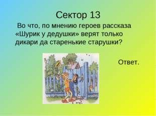 Сектор 13  Во что, по мнению героев рассказа «Шурик у дедушки» верят только