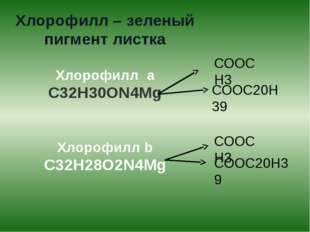 Хлорофилл – зеленый пигмент листка Хлорофилл а С32Н30ОN4Mg Хлорофилл b С32Н28