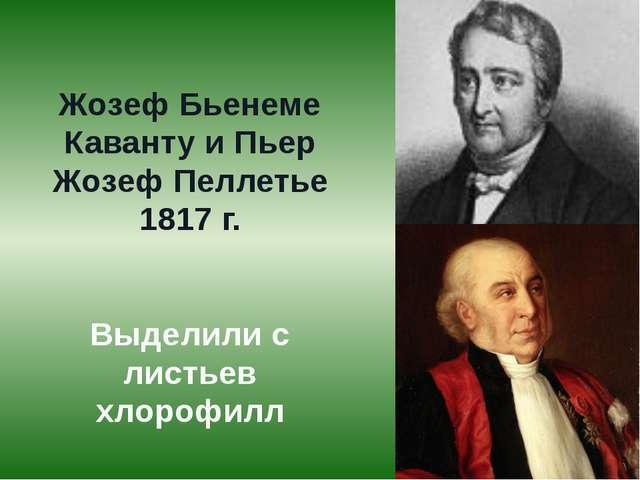 Жозеф Бьенеме Каванту и Пьер Жозеф Пеллетье 1817 г. Выделили с листьев хлороф...