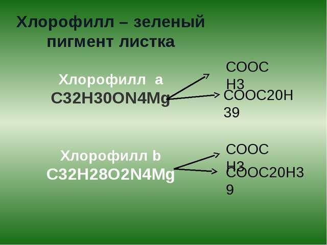 Хлорофилл – зеленый пигмент листка Хлорофилл а С32Н30ОN4Mg Хлорофилл b С32Н28...