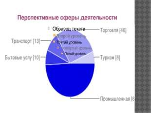 Перспективные сферы деятельности