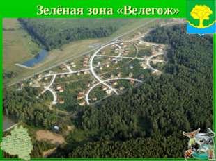 Зелёная зона «Велегож»