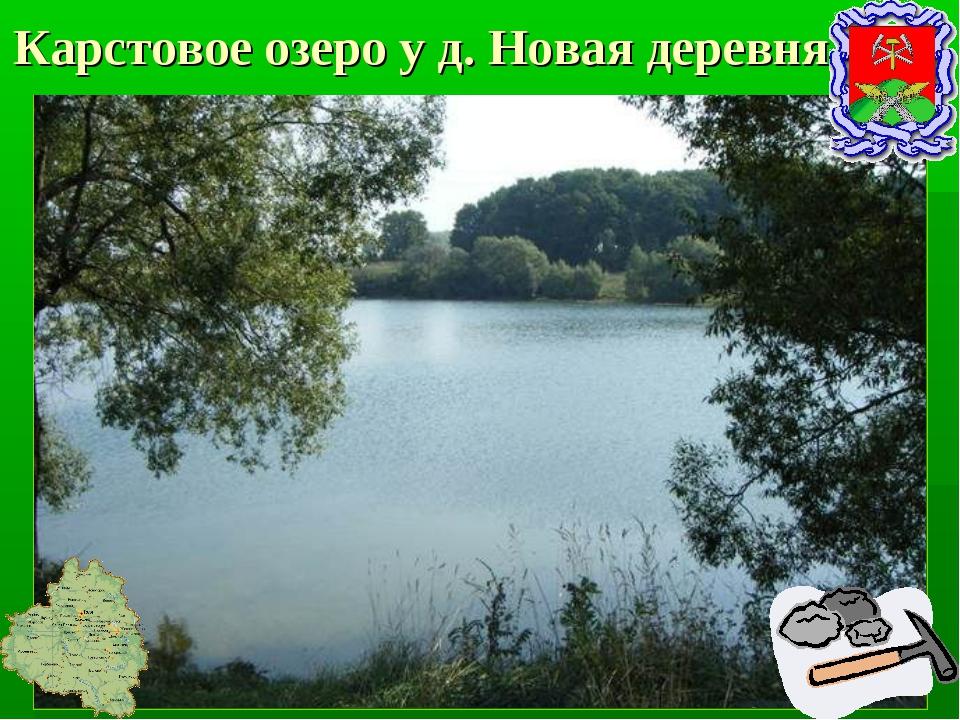 Карстовое озеро у д. Новая деревня