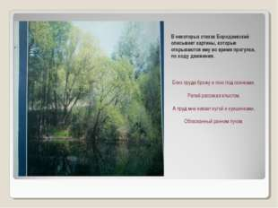 В некоторых стихах Бородаевский описывает картины, которые открываются ему во