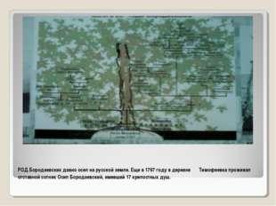РОД Бородаевских давно осел на русской земле. Еще в 1767 году в деревне Тимоф