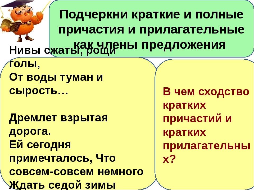 Латекс Секс Видео ХХХ