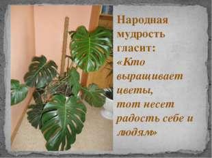 Народная мудрость гласит: «Кто выращивает цветы, тот несет радость себе и люд