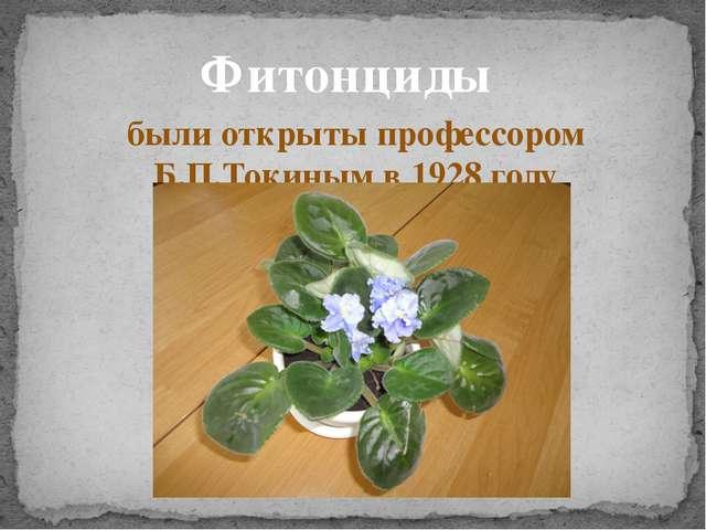 Фитонциды были открыты профессором Б.П.Токиным в 1928 году