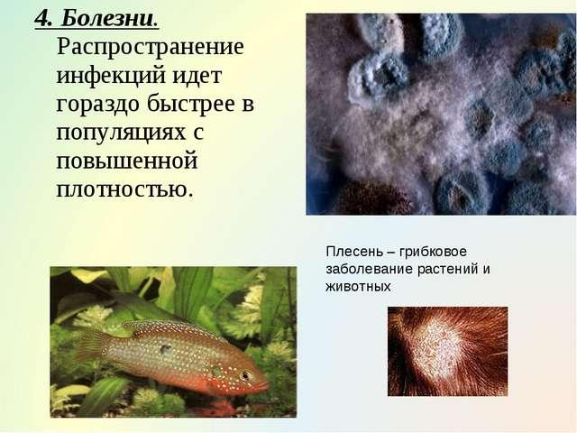 4. Болезни. Распространение инфекций идет гораздо быстрее в популяциях с повы...