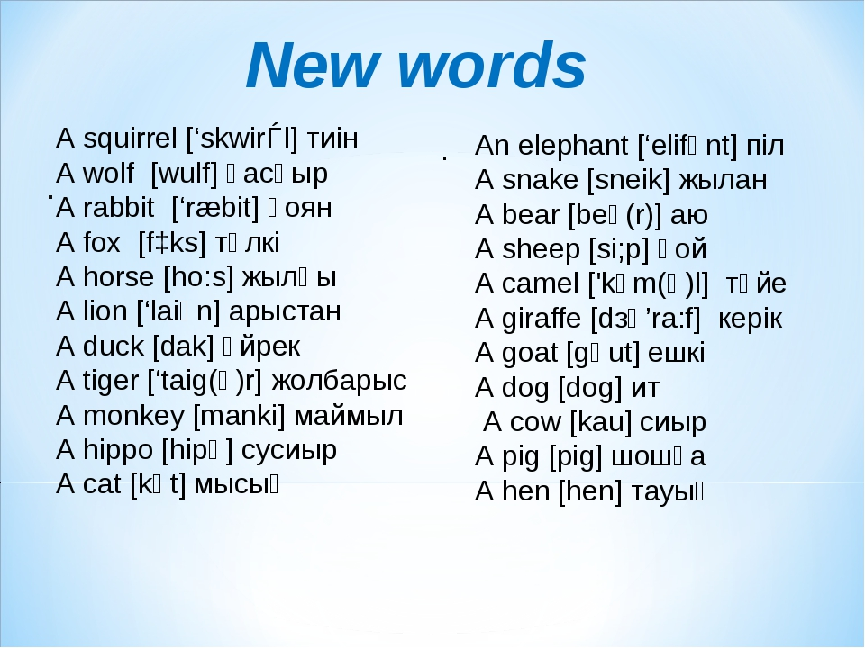 New words . . A squirrel ['skwirǝl] тиін A wolf  [wulf] қасқыр A rabbit  ['ræ...