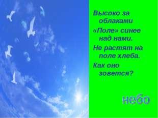 Высоко за облаками «Поле» синее над нами. Не растят на поле хлеба. Как оно зо