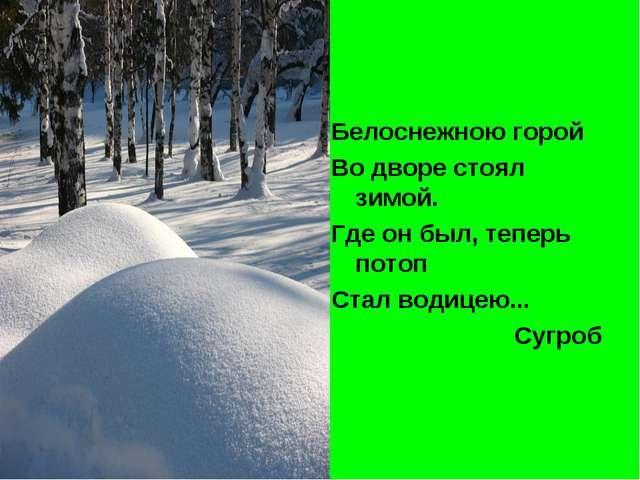 Белоснежною горой Во дворе стоял зимой. Где он был, теперь потоп Стал водицею...