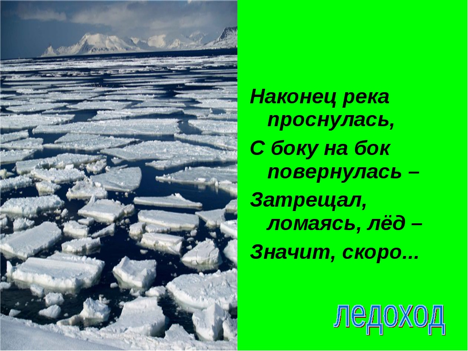 Наконец река проснулась, С боку на бок повернулась – Затрещал, ломаясь, лёд –...