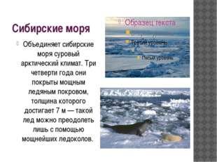 Сибирские моря Объединяет сибирские моря суровый арктический климат. Три четв