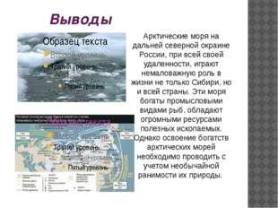 Выводы Арктические моря на дальней северной окраине России, при всей своей уд