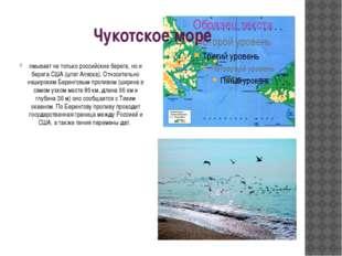 Чукотское море омывает не только российские берега, но и берега США (штат Аля