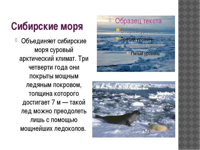 Сибирские моря Объединяет сибирские моря суровый арктический климат. Три четв...