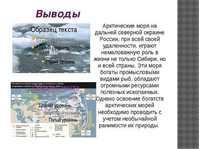 Выводы Арктические моря на дальней северной окраине России, при всей своей уд...