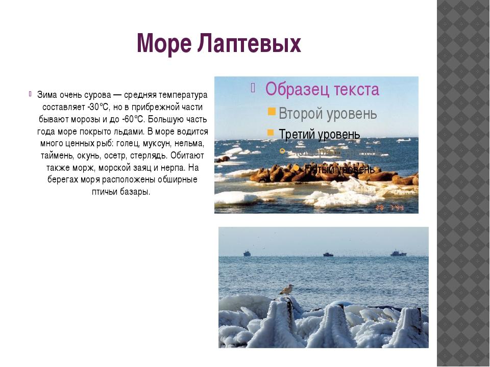 Море Лаптевых Зима очень сурова — средняя температура составляет -30°С, но в...