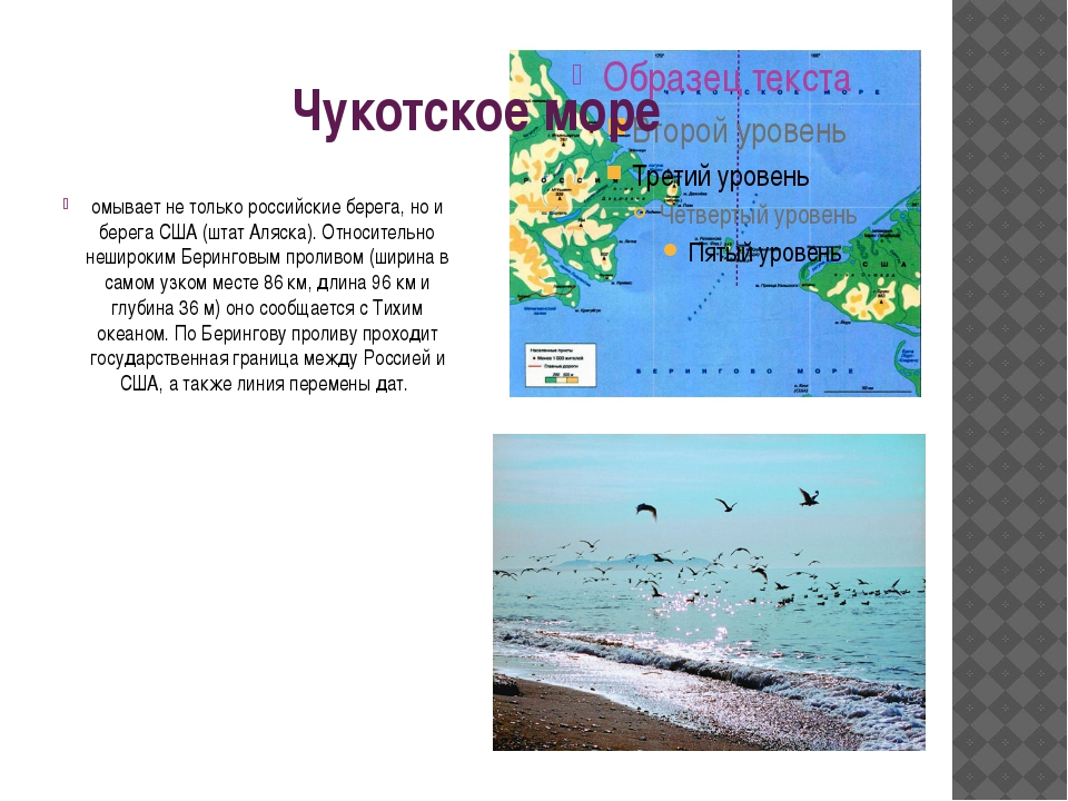 Чукотское море омывает не только российские берега, но и берега США (штат Аля...