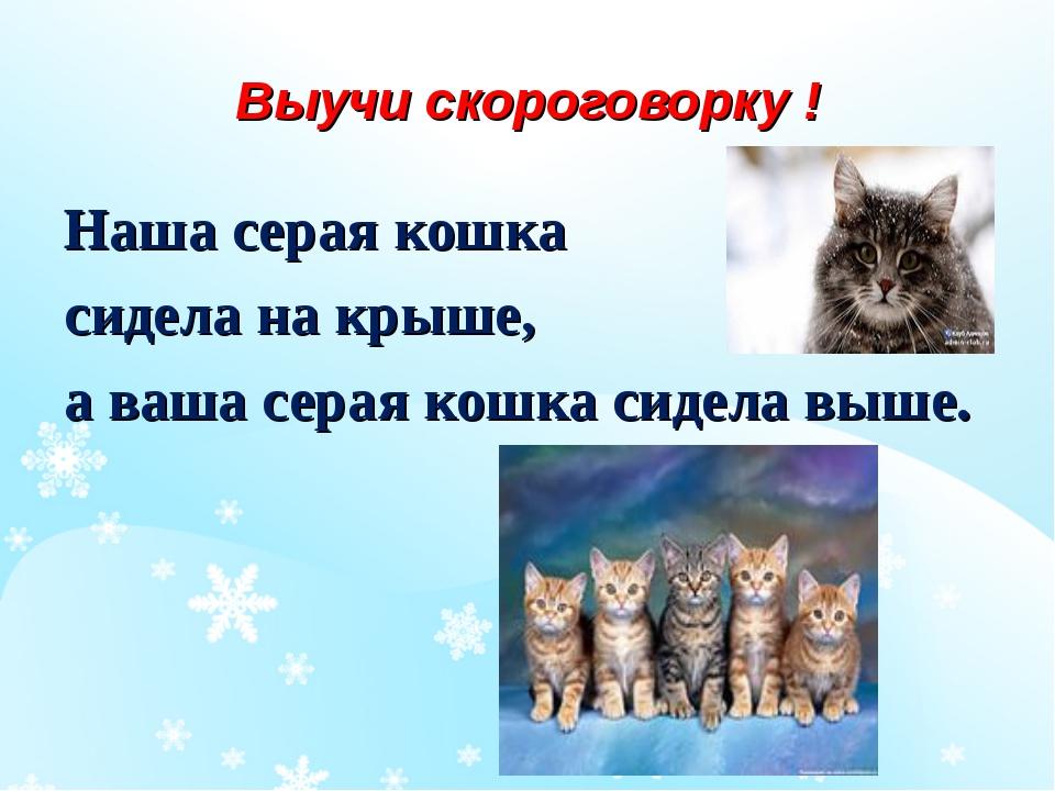 Выучи скороговорку ! Наша серая кошка сидела на крыше, а ваша серая кошка сид...