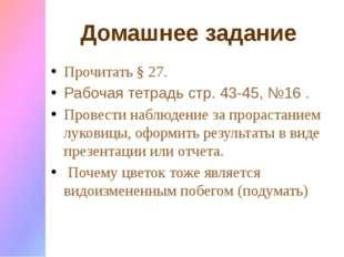 Домашнее задание Прочитать § 27. Рабочая тетрадь стр. 43-45, №16 . Провести н