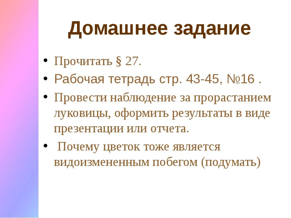 Домашнее задание Прочитать § 27. Рабочая тетрадь стр. 43-45, №16 . Провести н...