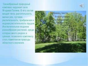 Своеобразный природный комплекс окружает село Ягодная Поляна. В его состав в