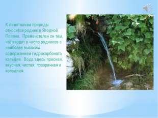 К памятникам природы относится родник в Ягодной Поляне. Примечателен он тем,