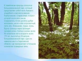 К памятникам природы относится Большеивановский парк, который представляет со