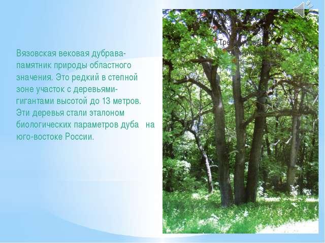 Вязовская вековая дубрава- памятник природы областного значения. Это редкий в...