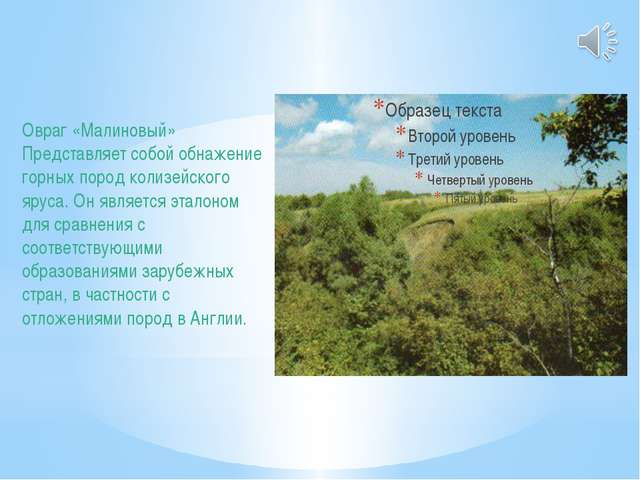Овраг «Малиновый» Представляет собой обнажение горных пород колизейского ярус...