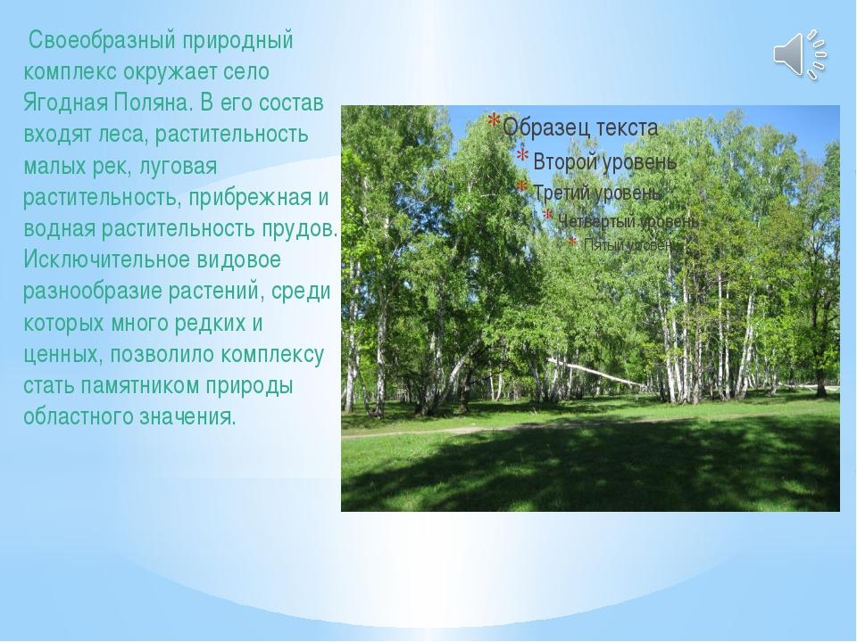 Своеобразный природный комплекс окружает село Ягодная Поляна. В его состав в...