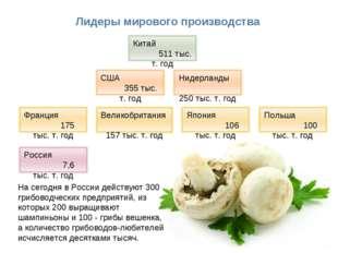 * Лидеры мирового производства На сегодня в России действуют 300 грибоводческ