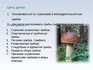 * Познакомиться со строением и жизнедеятельностью грибов Научится распознават