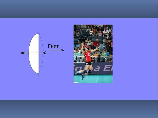 При выполнении нападающего удара тело волейболиста в прыжке сравнивают с нат...