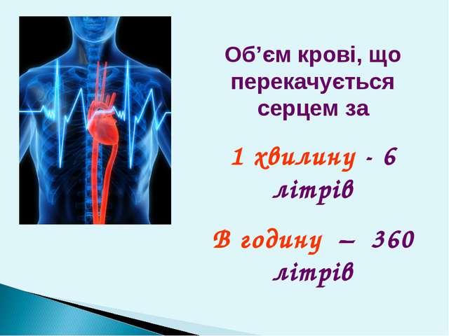 Об'єм крові, що перекачується серцем за 1 хвилину - 6 літрів В годину – 360 л...