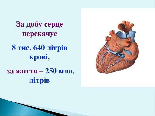 За добу серце перекачує 8 тис. 640 літрів крові, за життя – 250 млн. літрів