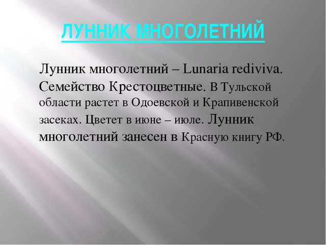 ЛУННИК МНОГОЛЕТНИЙ Лунник многолетний – Lunaria rediviva. Семейство Крестоцве...
